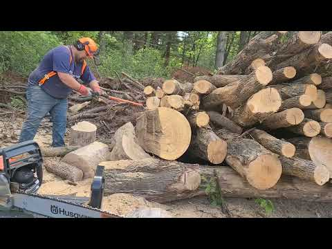 Firewood Storage Shed - Who has the best?
